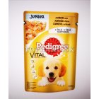 Pedigree Junior s kuracím v želé 100g